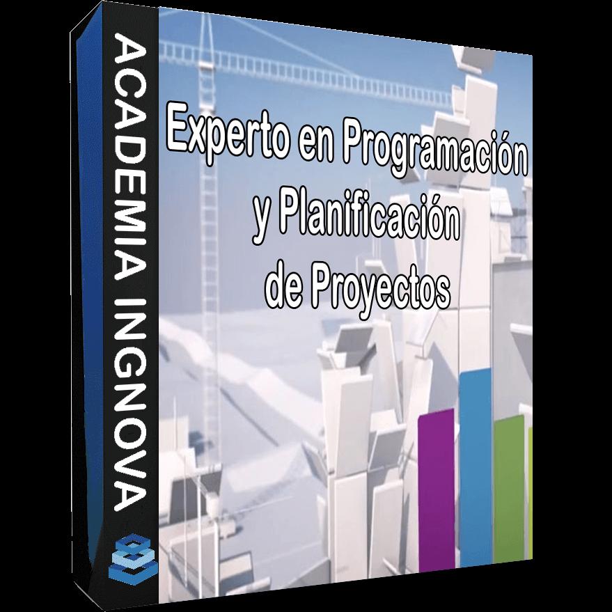 EXPERTO EN PROGRAMACIÓN Y PLANIFICACIÓN DE PROYECTOS